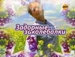 """Михаил Задорнов """"Задорные заколебалки"""""""